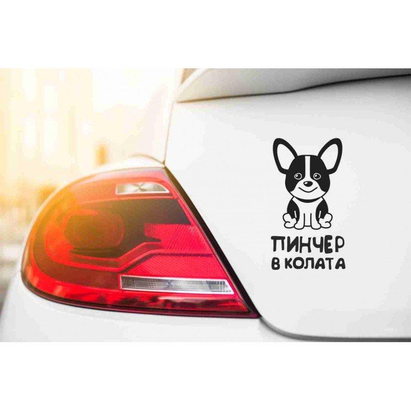 Стикер Пинчер в колата