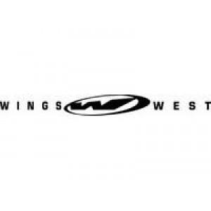 Wings  лепенка , състезателна за автомобил, тунинг стикер, лого
